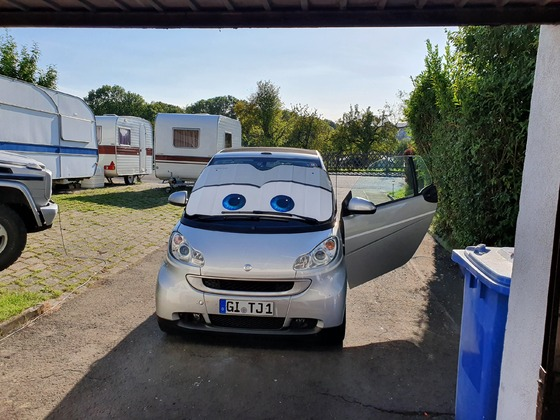 SafetyCar 3.0 CARS Edition
